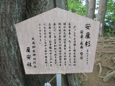Mitakesetsumei_0136_2