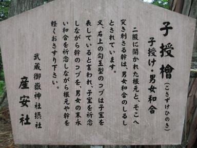 Mitakesetsumei_0138