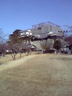 matsuyamajo008
