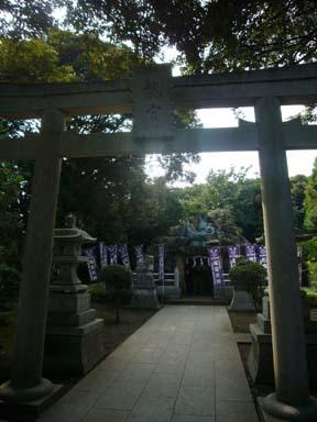 Enoshima080812_022