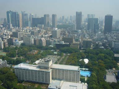 Tokyo_tower080912_002_150m_higashi
