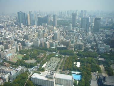 Tokyo_tower080912_003_250m_higashi