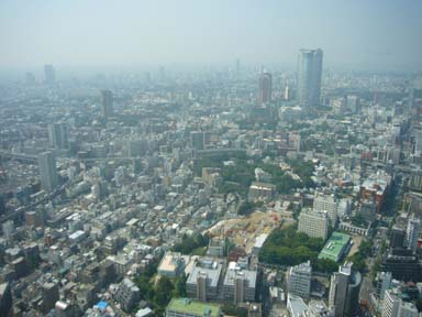 Tokyo_tower080912_003_250m_nishi