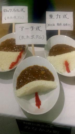 Dam_curry