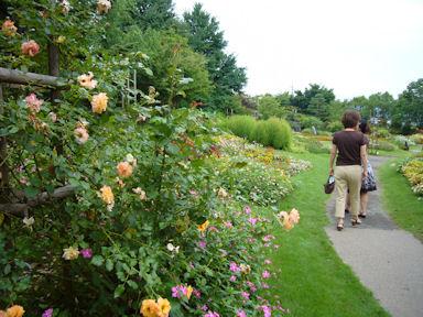 Floral_garden_obuse090809_010