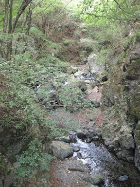 Kawanoriyama090919_017