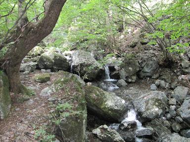 Kawanoriyama090919_024