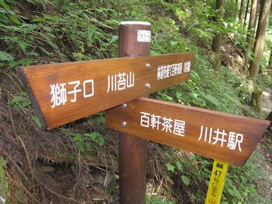 Kawanoriyama090919_026