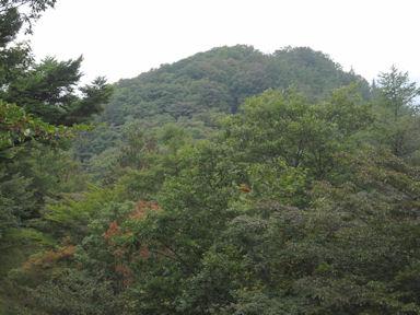 Kawanoriyama090919_038