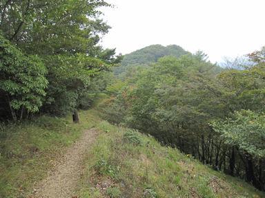 Kawanoriyama090919_039