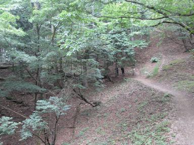 Kawanoriyama090919_048