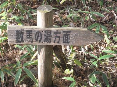Mitohsan091031_024