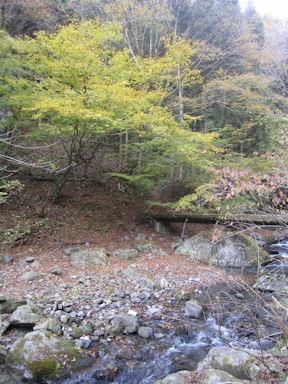 Kawanoriyama091107_002