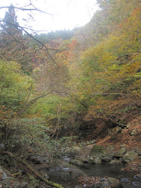 Kawanoriyama091107_004