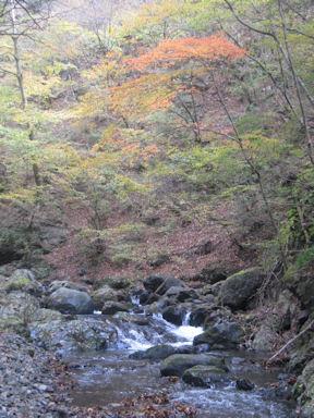 Kawanoriyama091107_007