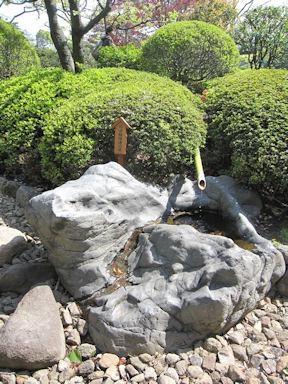 Kiyosumi_garden100418_012