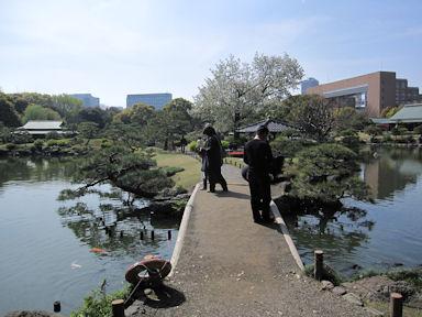 Kiyosumi_garden100418_015
