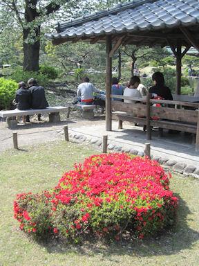Kiyosumi_garden100418_017