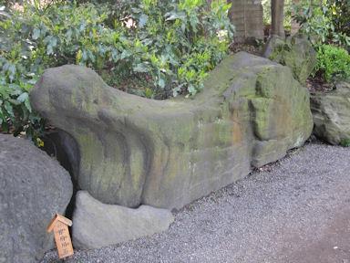 Kiyosumi_garden100418_025