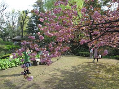 Kiyosumi_garden100418_027