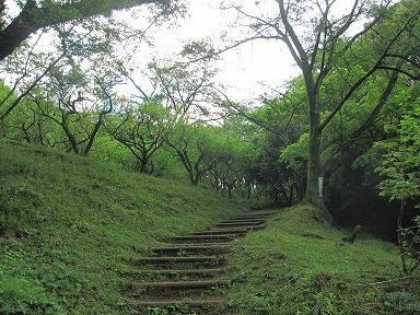 Ooyama0085