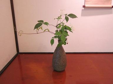 Sakuragijinja019