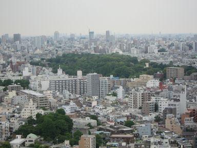 Koishikawashokubutsuen