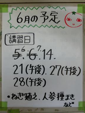 20150531_111046