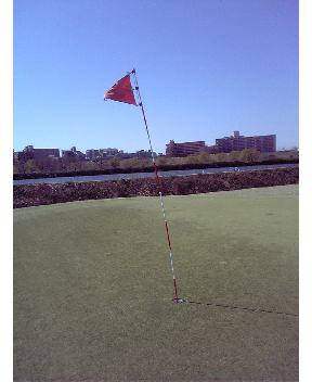 強風の川口市浮間ゴルフ場