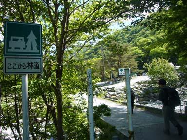 Hinokiboramaru070520_003