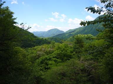 Hinokiboramaru070520_007