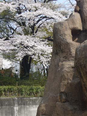 Kiryugaokakoen005