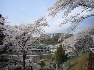 Kiryugaokakoen006