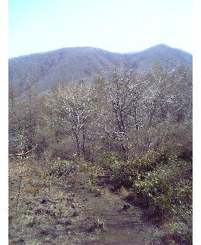 浅間隠山その1