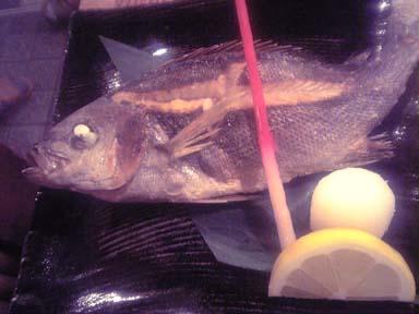 Shiokaze005