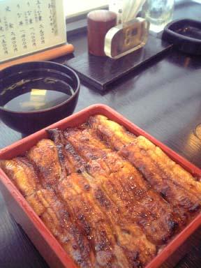Unagi_kobori004